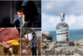 Caspyn Cornish Gin - Distilled in Longrock